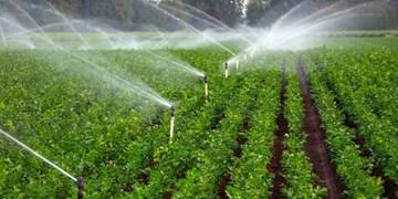 لازمه افزایش تولیدات غذایی، افزایش بهرهوری مصرف آب در بخش کشاورزی است