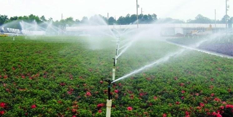 کشاورزی سمنان رو به رشد/ افزایش ۲ برابری سامانههای نوین آبیاری در قلب کویر