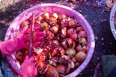 دون کردن یکی از حوزه های کاری زنان روستاست که چوب دستی بر انارها می زنند تا دانه ها جدا شود.
