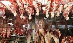 افزایش ۲۵ درصدی تولید گوشت قرمز در فیروزآباد