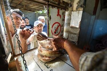 فروش ماهیان صید شده به مردم در بازار