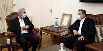 عراقچی: امنیت مرزنشینان برای ما مهم است/ پیشنهاد ابتکاری حل بحران قرهباغ را با همسایگان مطرح میکنم