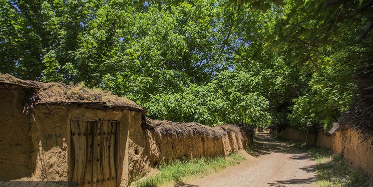تیشه بر ریههای تنفسی شیراز/ هجوم ویلاهای سر به فلک کشیده به باغهای قصردشت