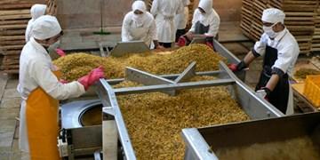 شرایط برای ورود محصول کشمش به بورس کالا فراهم است/پیگیریها در قزوین کند پیش میرود