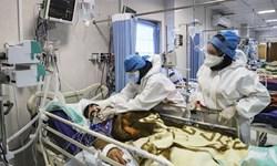 شناسایی بیش از ۲۰ هزار کرونایی در بوشهر/ ۷۷ نفر بستری هستند