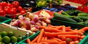 صادرات 136 میلیون دلاری کالاهای کشاورزی از آذربایجانشرقی/ افزایش 6.5 درصدی سهم صادرات