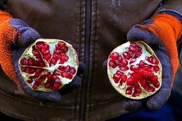 بخشی ار اهالی روستا از برداشت انارو تولیدات مربوط به این محصول کسب درآمد می کنند.