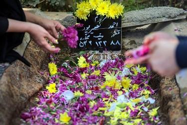 مزار مرحوم احمد نصیرپور عکاس پیشکسوت خبری در قطعه هنرمندان بهشت زهرا(س)