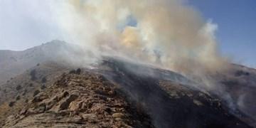 ۱۰۰ هکتار از عرصههای طبیعی قوچان در آتش بیاحتیاطی گردشگران سوخت