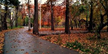 شبیخون به طبیعت زیبای البرز؛ از قطع درختان جمهوری تا خشک کردن رودخانه کرج