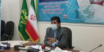 آفت سوسک کلرادو را چه کسی وارد ایران کرد؟/هشدار درباره  نابودی ژنهای حیوانی کشور