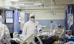 شناسایی ۱۸۶ بیمار کرونایی در خراسانجنوبی/ متوفیان به ۳۲۷ نفر رسیدند