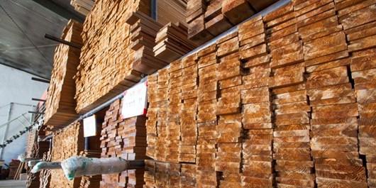 کشف و ضبط انبار چوب جنگلی غیرمجاز در شهرک جوادیه