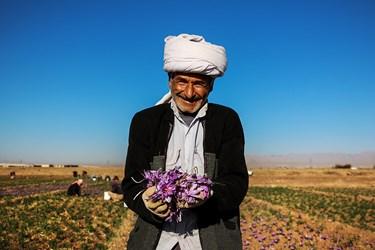 پیرمرد ساده دل روستایی که با لبخند دلنشینش، از محصول پر بار زمین کشاورزی ابراز رضایت میکند.