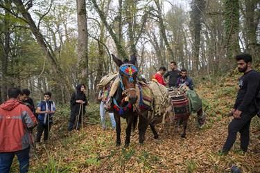 نجاتگران حریق توسکستان