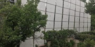 روش جدید مدیریت شهری برای حفظ باغات شهر/چه کسانی قرار است به کمک بیایند؟