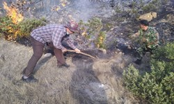 بازگشت آرامش به جنگلهای گیلان/ 90 درصد آتشسوزیهای اخیر عمدی بود