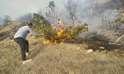تلاش امدادگران برای مهار آتش پارک ملی گلستان/ زبانههای آتش بعد از 24 ساعت فروکش نکرد