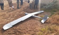 فرود اضطراری یک پهپاد آموزشی در بستان