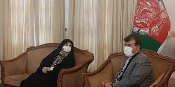 بروجردی در دیدارسفیر افغانستان: دانشجویان خون خود را برای بقای افغانستان هدیه کردند
