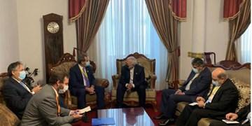 رایزنی ظریف و وزیر خارجه شیلی در لاپاز
