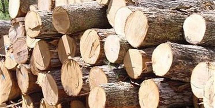 کشف ۷ تن چوب قاچاق در فراهان