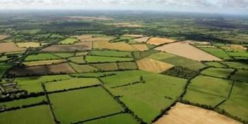 هرگونه تغییر کاربری غیرمجاز در زمینهای زراعی مشمول جریمه میشود