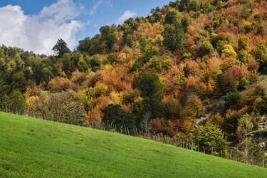 طبیعت پاییزی شهرستان ساری