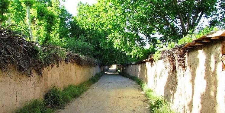 ماجرای ادغام ستاد آبادگری باغات شیراز و باغاتی که تر و خشک با هم می سوزند