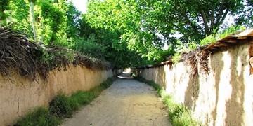 تغییر کاربری 700 باغ شناسنامهدار تبریز