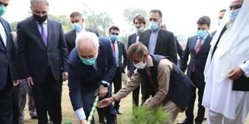کاشت نهال در محوطه وزارت خارجه پاکستان توسط ظریف +فیلم