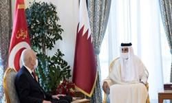 رئیس جمهور تونس در دوحه با امیر قطر دیدار کرد