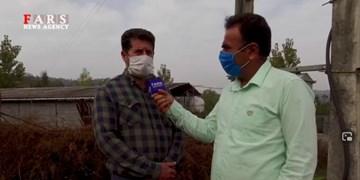فیلم|گلایههای ضعف ولتاژ برق در منطقه هلیخال بابل