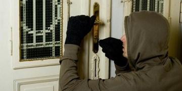 زن و شوهری که مرتکب 21 فقره سرقت شدند/ مردم جواهرات خود را به بانکها بسپارند