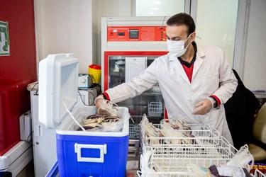پرستاری در حال جمع آوری  ذخایر خون در پایگاه مرکزی سازمان انتقال خون