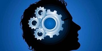 حمایت از کارآفرینی برای رفع مشکل بیکاری/ درخواست کارآفرینان از مسئولان؛ کارشکنی نکنید