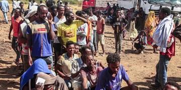 بررسی تأثیر جنگ در اتیوپی بر پنج کشور آفریقایی