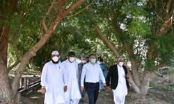امنیت غذایی کشور به استان سیستان و بلوچستان وابسته است