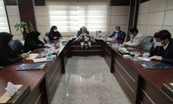 پرداخت بیش از 4 هزار میلیارد ریال تسهیلات به مردم سیستان و بلوچستان