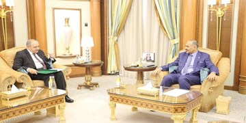 مصر برای نجات توافق «ریاض» در جنوب یمن وارد عمل شد