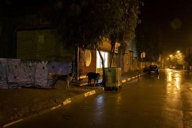 خیابانهای خالی پس از محدودیتهای کرونایی در استان سمنان