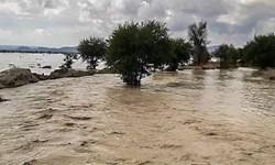 جاری شدن روان آب و پرآب شدن رودخانهها در سیستان و بلوچستان
