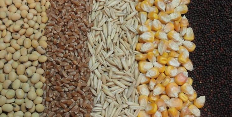 مصوبه ستاد تنظیم بازار درباره «ترخیص درصدی»  کالاهای اساسی