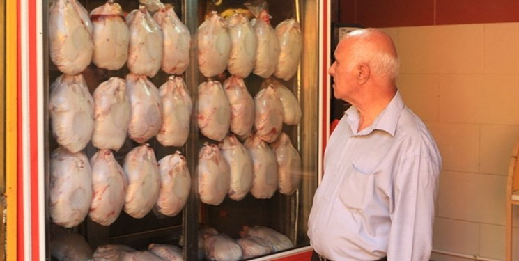 توزیع مرغ به قیمت 18 هزار و 500 تومان در میادین میوه استان تهران/ فعلا نیاز به ذخیرهسازی نیست