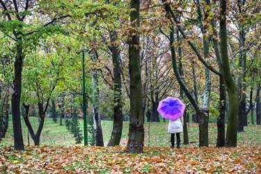 بارش باران پاییزی در پایتخت/ پارک ملت تهران
