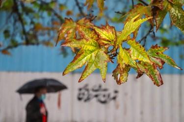 بارش باران پاییزی در پایتخت/ میدان ونک تهران