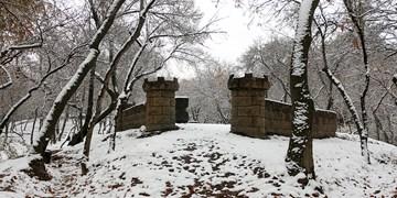 گزارش تصویری| اولین برف پاییزی مشهد را سپید پوش کرد