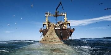 توقیف ۲۹فروندشناور متخلفدر خلیج فارس از ابتدای امسال