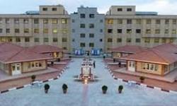 دانشگاه آزاد شاهینشهر سبزپوش شد