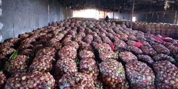 کشف محموله 250 تنی پیاز احتکار شده در قزوین